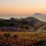 Эвганейские холмы: вина, курорты и древние пути в прекрасной Италии.